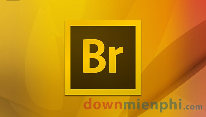 adobe-bridge-cc-2017-1.jpg