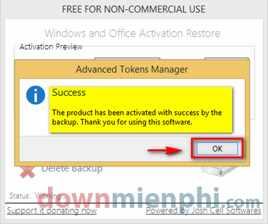 advanced-tokens-manager-7.png
