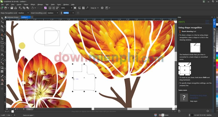 coreldraw-graphics-suite-x8-2.jpg